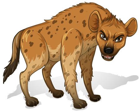 hienas: Ilustraci�n de un Cerca hienas