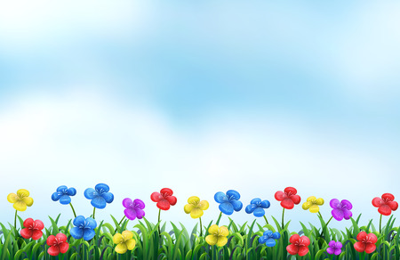 flowerbed: Illustration of a beautiful view of a flower field