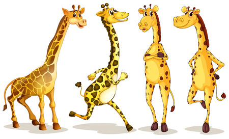 Illustration of different poses of giraffe