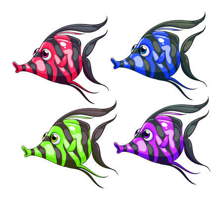 blooded: Four colorful fishes on a white background