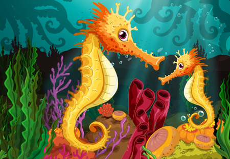 Two seahorses under the sea near the seaweeds