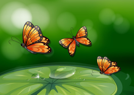 Illustration of butterflies flying over a water lily