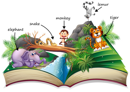 popup: Illustration of a popup story book with many animals