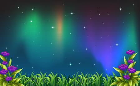 aurora: Illustration of a night view of aurora