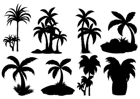 Illustration of different silhouette palm trees