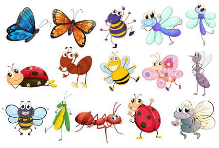 Illustration of a set of different kinds of insects Ilustração