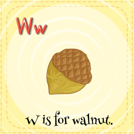 walnut: A letter W which stands for walnut Illustration