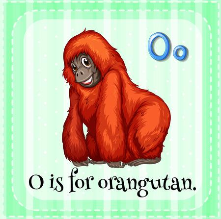 orangutan: Illustration of a letter O is for orangutan