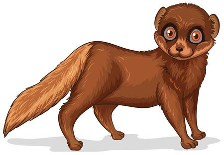 mink: Illustration of a single cute brown mink