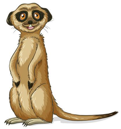 illustration of a close up meerkat royalty free cliparts vectors rh 123rf com cartoon meerkat clipart Meerkat Drawing