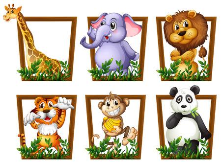 Illustration av många djur i en träram