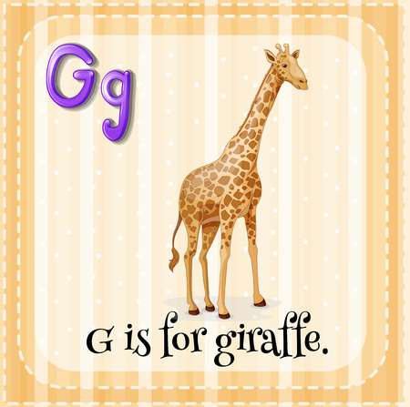 g giraffe: Illustration of an alphabet G is for giraffe
