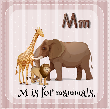 mammals: Illustration of a letter M is for mammals