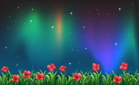 flowerbed: Illustration of a beautiful view at night