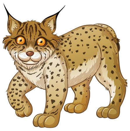 Illustration of a close up lynx