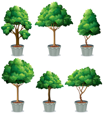 Illustration of different shape of potted plant Vector