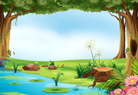 summer cartoon: Illustration of an outdoor scene of a pond
