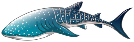 Illustratie van een close-up whaleshark Stock Illustratie