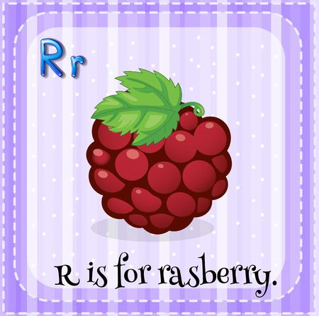 rasberry: Illustration of a letter r is for rasberry