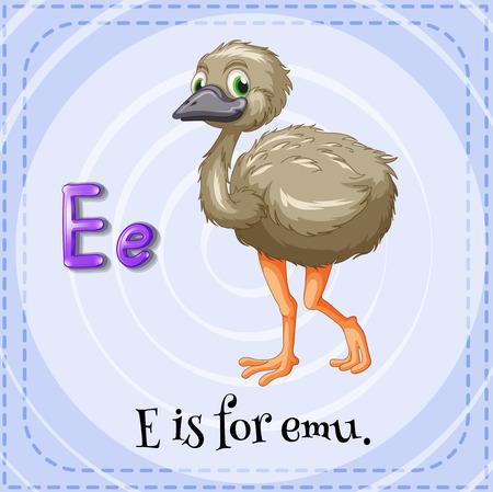 emu bird: A letter E for emu Illustration