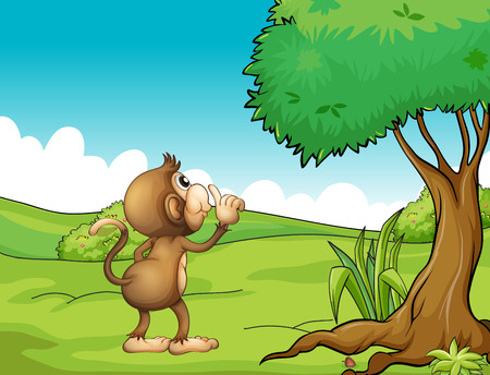 hillside: A monkey under the tree