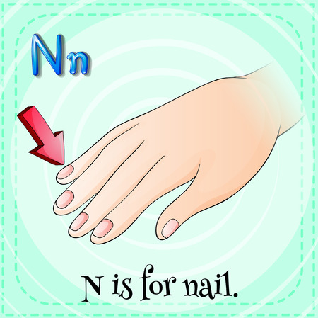 linguistic: Illustration of a letter N is for nail Illustration