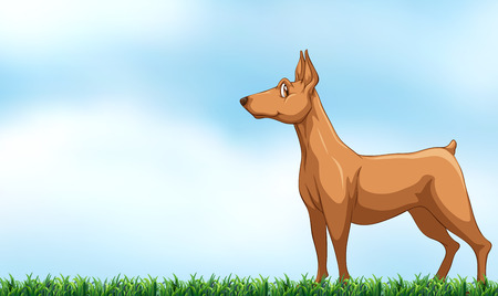 dog standing: Illustration of a dog standing in the field