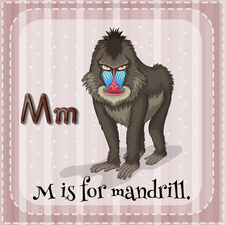 mandrill: Illustration of a letter M is for mandrill
