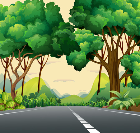 manmade: A narrow road surrounded with plants