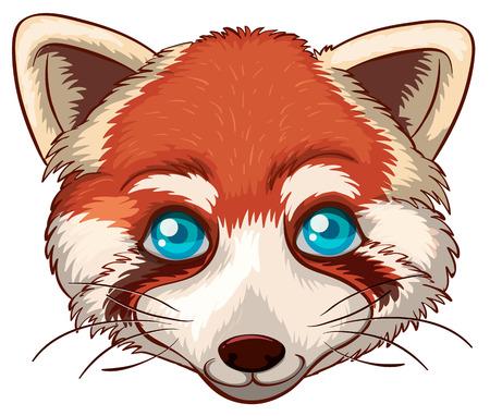 close up eye: Illustration of a close up red panda head Illustration