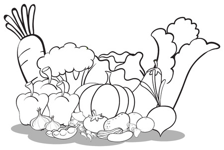 veggies: A sketch of the different vegetables on a white background