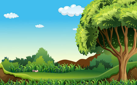 green environment: A green environment under the clear blue sky Illustration