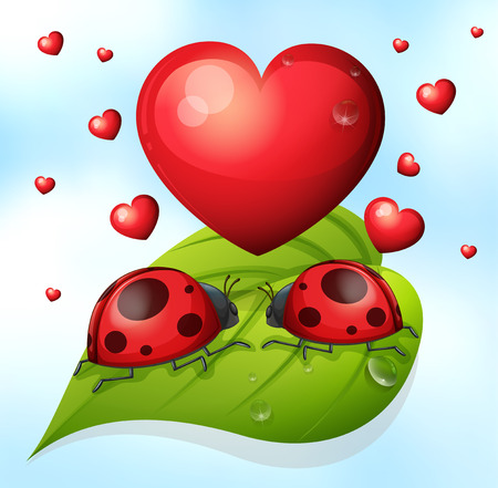lay: Illustration of two lay bugs on a leaf with hearts