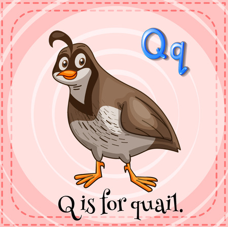 A letter Q for quail Ilustracja