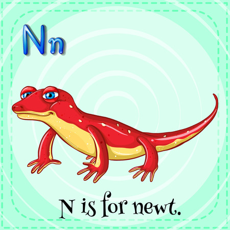 linguistic: Illustration of a letter N is for newt