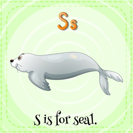 english alphabet: Illustration of a letter S is for seal