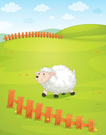 A sheep at the field with a fence