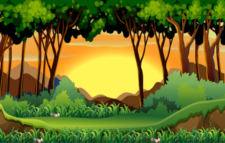 scenes: Illustration of a scene of a forest at sunset Illustration