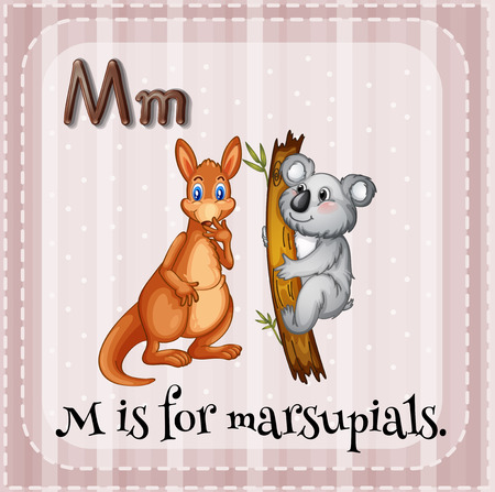 first australians: Illustration of a letter M is for marsupials