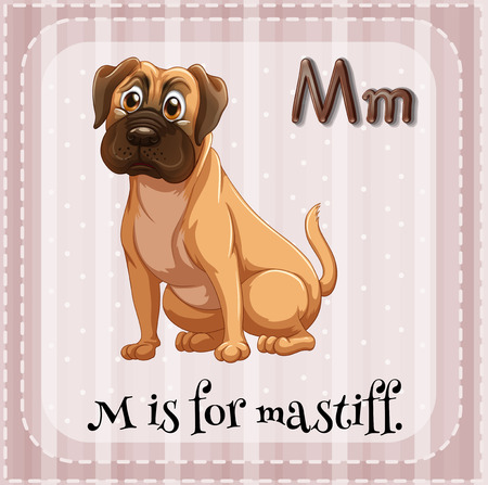 mastiff: Illustration of a letter M is for mastiff