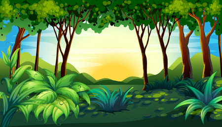 Illustration of a scene of a forest