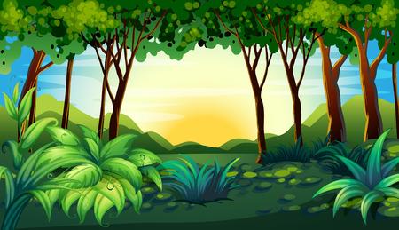jungle scene: Illustration of a scene of a forest