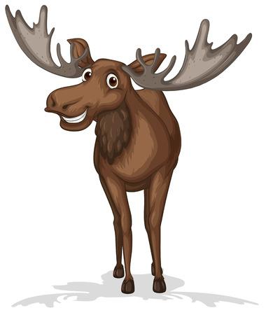 Illustratie van een close-up eland Stock Illustratie