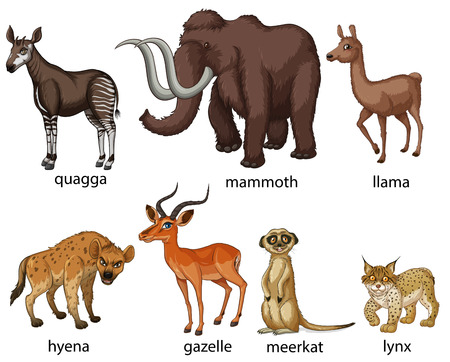 mammoth: Illustration of many types of animals