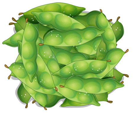 Illustration of a bunch of edamame Vector