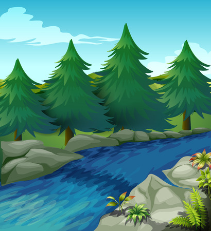 river bank: Illustration of a river with pine trees alongside