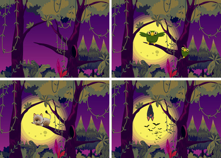 Illustration of four night scenes of the forests Vector