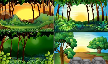 sol caricatura: Ilustraci�n de cuatro escena diferente de los bosques Vectores