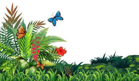 fern leaf: Illustration of butterflies flying in the garden