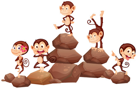 scratching: monkeys standing on rocks